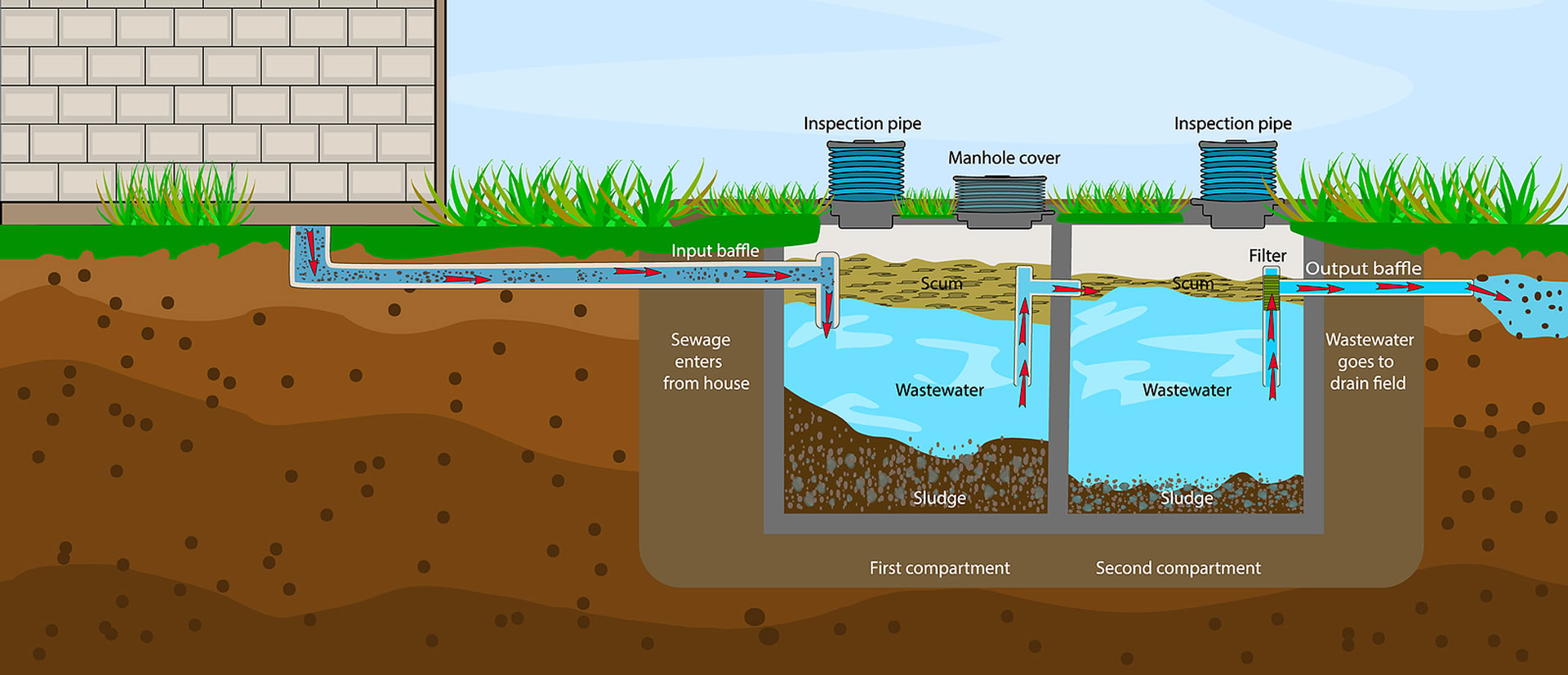 The Role of Microbes in Your Septic System
